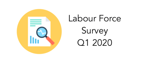 LabourForceSurvey INOU View Preview Box Image